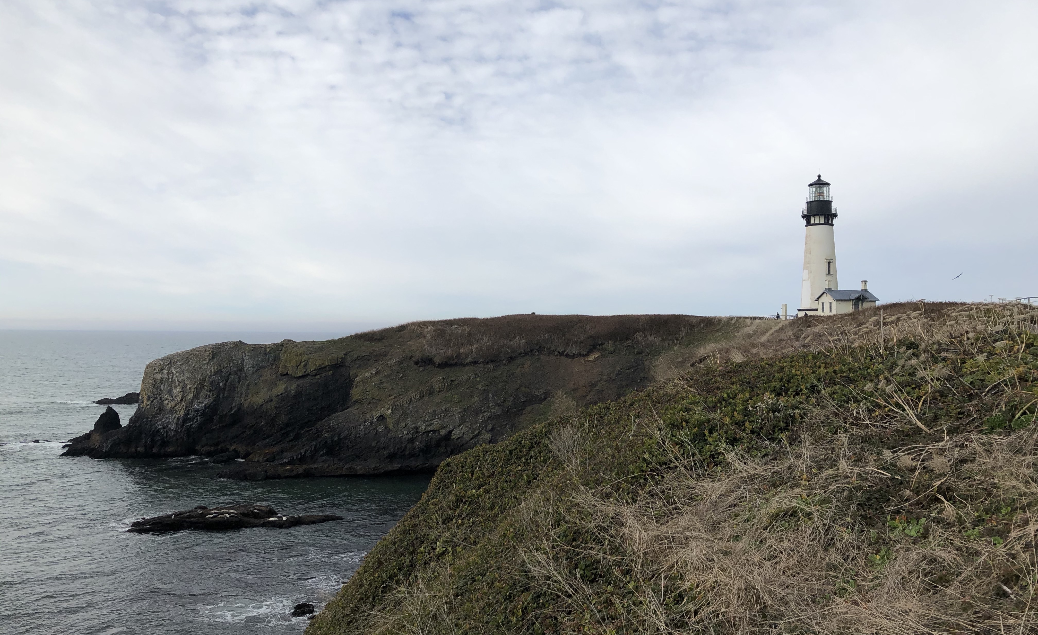 A lone white lighthouse on the rocky Oregon coast with overcast weather and dull green banks.